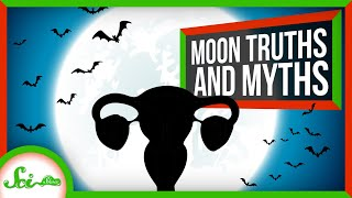 8 Truths and Myths About the Full Moon