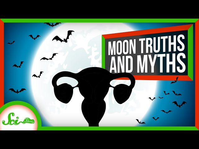 8 Truths and Myths About the Full Moon thumbnail