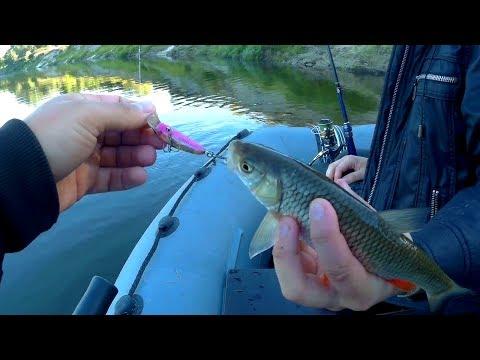 ловля хищника в мае на малых реках видео