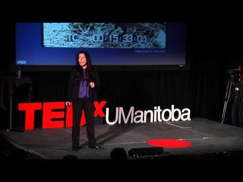 Bird Brain: Fact or Fiction? | Debbie Kelly | TEDxUManitoba