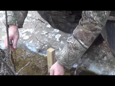 Изготовление капканов в домашних условиях на бобра видео