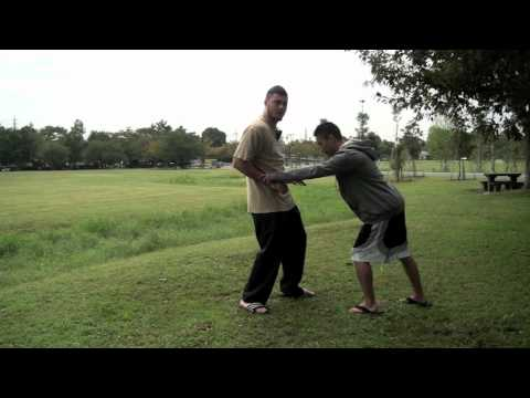 Technique of the Week: Combative Taichi Basic Movements & Applications Image 1