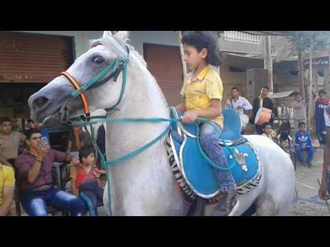 الطفل المعجزه   رقص حصان جميل جدا thumbnail