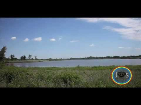 JS: From a sanctuary to a killing zone: Jamaica Bay Wildlife Refuge. 7/9/2012.