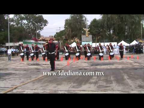 Lobos del CBTIS 15 de Ciudad Mante Tamaulipas