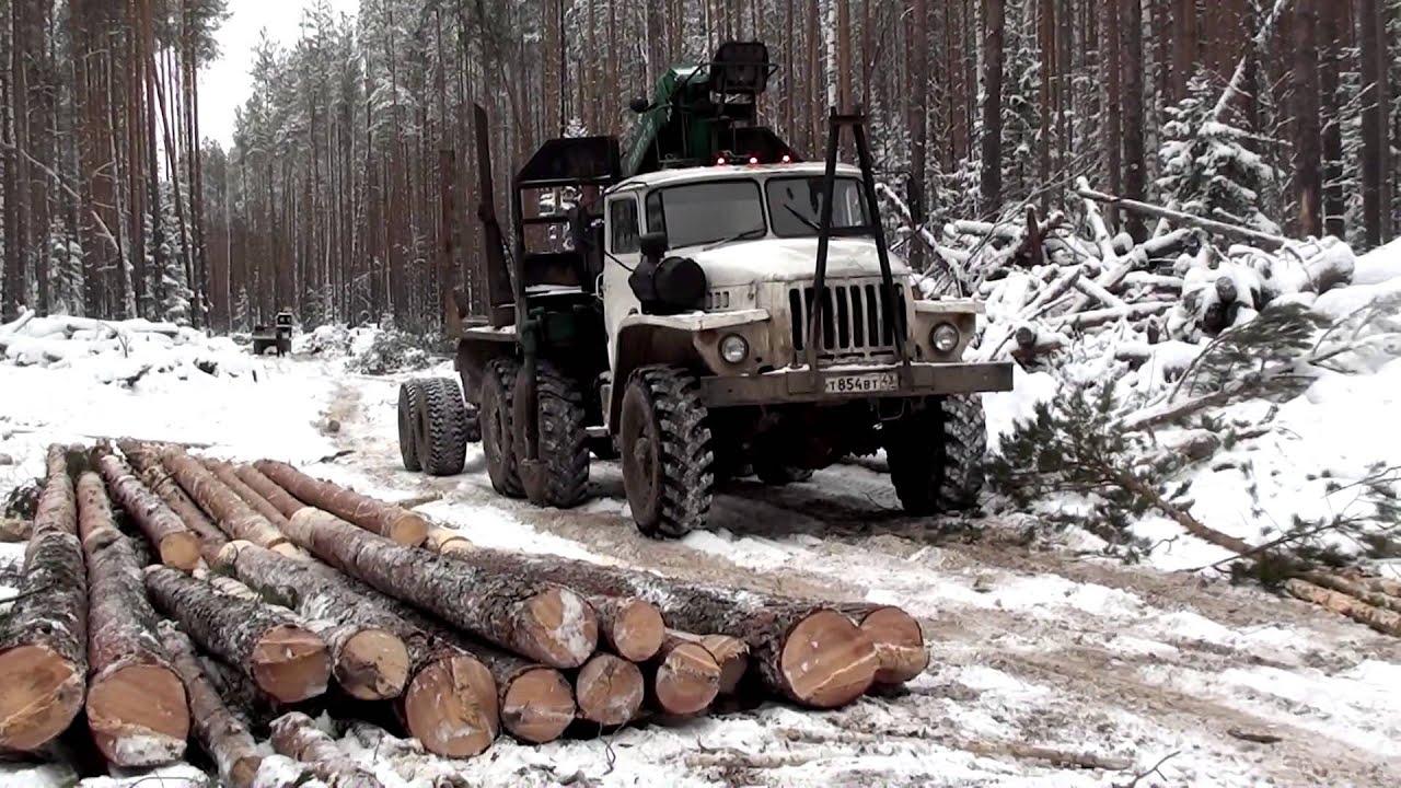 Секс на лесозаготовке 26 фотография
