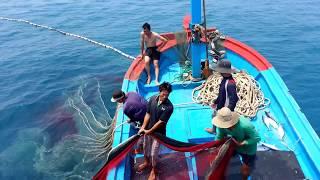 Vietnamese Fish Catching Tour / Tour trải nghiệm đánh bắt cá trên biển