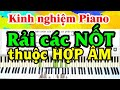 Rải Các Nốt Thuộc Hợp Âm Không Nên Nhớ Số Ngón Tay Đại Thành Piano mp3