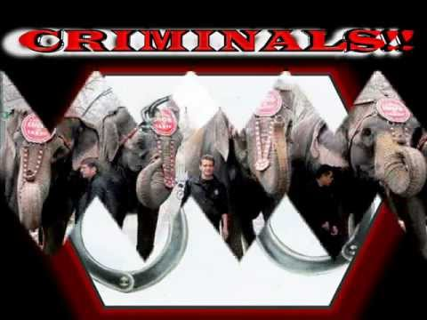 Ringling Bros Circus Dragons - DEADLY CHILD BIOHAZARD !- Federal Torture and Tuberculosis Trial