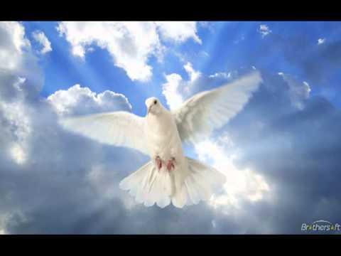 Христианские песни - У дикого гуся