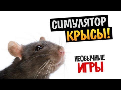 НЕОБЫЧНЫЕ ИГРЫ - Rat Race (Симулятор Крысы)