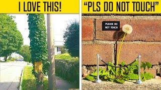 Random Acts Of Vandalism That Are Genius