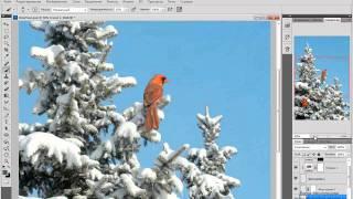 В photoshop видео урок как сделать в