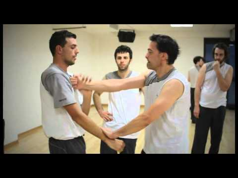 Wing Tsun Udine - lessons and techniques Image 1