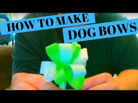 0 How to Make Dog Grooming Bows