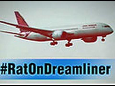 Pilot finds rat aboard dreamliner
