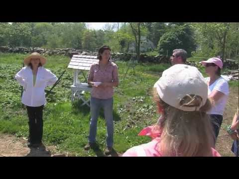 Organic Farming & Gardening at The Hickories - Part 3: Soil Bacteria and Fungi