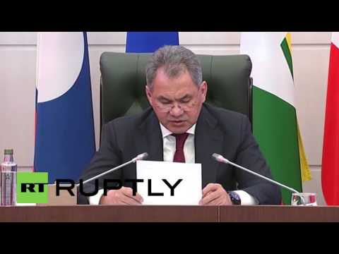 Russia: Shoigu touts ASEAN cooperation with DefMins in Moscow