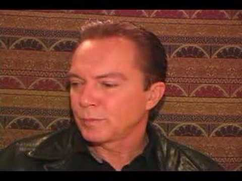 70s TEEN IDOL DAVID CASSIDY PUTS GEMS UP FOR AUCTI