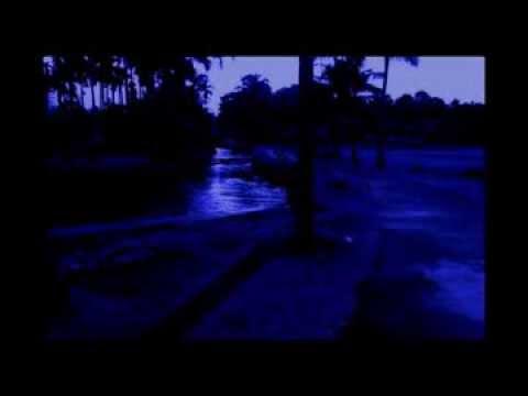 Dr.M.S.Sreekumar music-Pathinju Veesunna-32.8mb