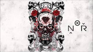 N.O.R. - Aripi noi