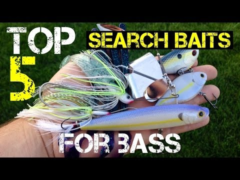 Top 5 Search Baits For Bass video