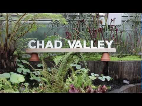 Chad Valley - Young Hunger (Album Teaser)