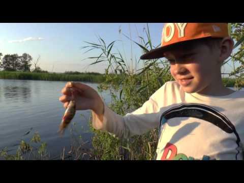 аккорды рыбалка пикничок
