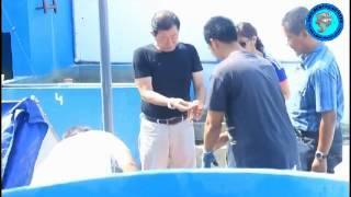 Japanese buyers Berkunjung ke FARM FISH BOSTER CENTRE