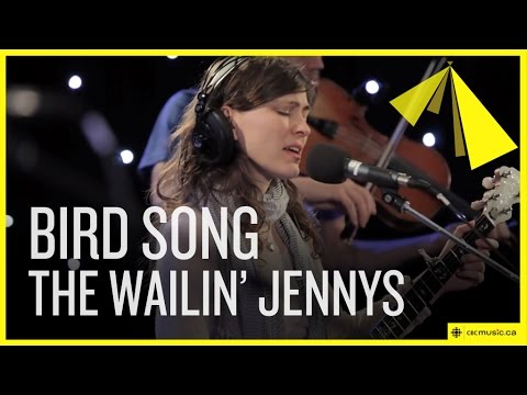 The Wailin Jennys - Bird Song