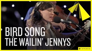 THE WAILIN' JENNYS - BIRD SONG LYRICS