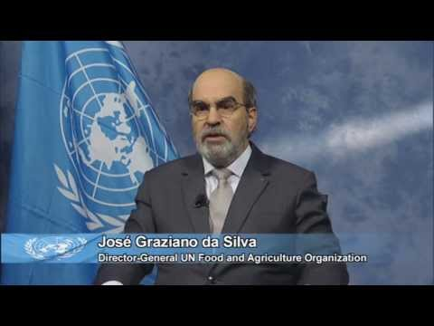 SOFA2013 Food systems for better nutrition - José Graziano da Silva, FAO Director-General