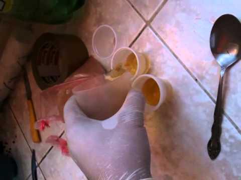 veneno casero para eliminar hormigas de casa 2