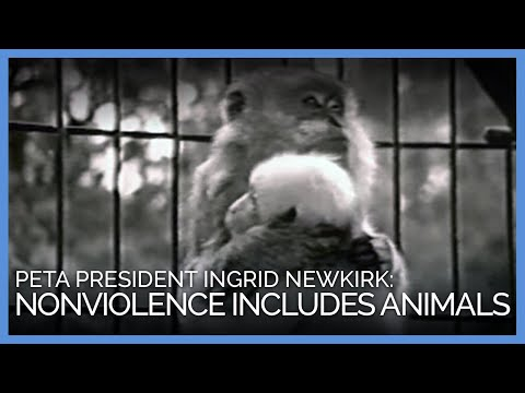 Nonviolence Includes Animals