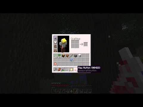 Minecraft :: Let Season 5 Begin :: Mindcrack Server :: Episode 1
