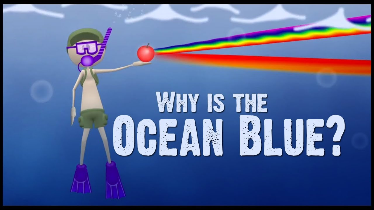 Why Is The Ocean Blue?  Youtube. Rooms Decorated In Blue. Vases Decor. Centerpieces For Living Room Table. Room For Rent Kissimmee. Las Vegas Rooms Cheap. Wine Kitchen Decor. Chicago Decorators. Christmas Lights Room Decor