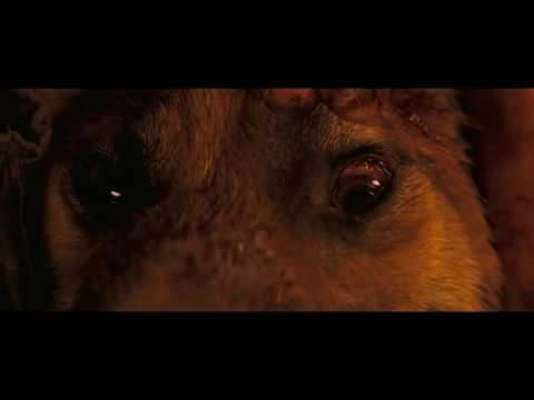 Трогательный момент из фильма Я легенда