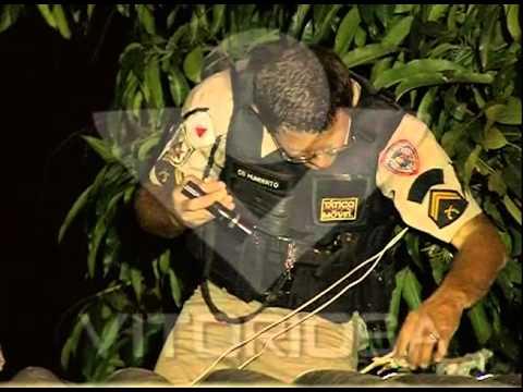 Traficantes usavam árvore para vigiar ação policial no Tubalina