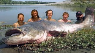 MAMMOTH RECORD CATFISH 265 POUND - HD by CATFISHING WORLD