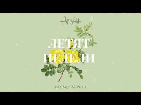 Дрозды - Летят Недели (official audio) ПРЕМЬЕРА 2019