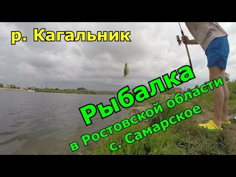 рыбалка и отдых на реке дон дневник рыболова