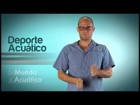 Módulo Mundo Acuático del Video Diccionario de Lengua de Señas Venezolana Tomo 3