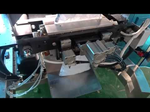 Ice cube/frozen food weighing and packing machine