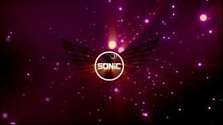 SONiC - Dzika plaża