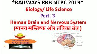 Biology | Human Brain and Nervous System | General Science and Life Science for RRB NTPC  2019
