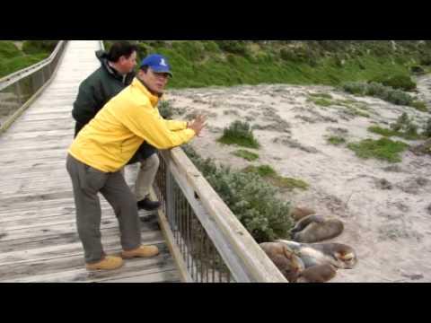 Tourism Australia - Wildlife - Featuring Toshio Shiba