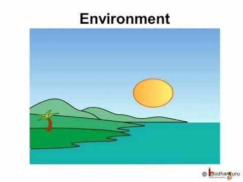 Science - Environment - Pollution - Hindi