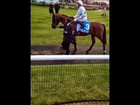 Salma Makhdoom - Newmarket Racecourses