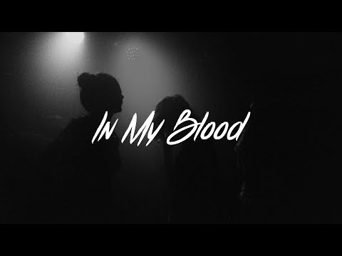 Shawn Mendes - In My Blood Lyrics (Acoustic)