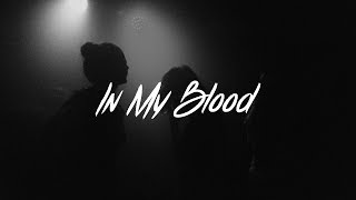 Download Lagu Shawn Mendes - In My Blood Lyrics (Acoustic) Gratis STAFABAND